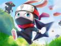 Mängud Ninja Rabbit